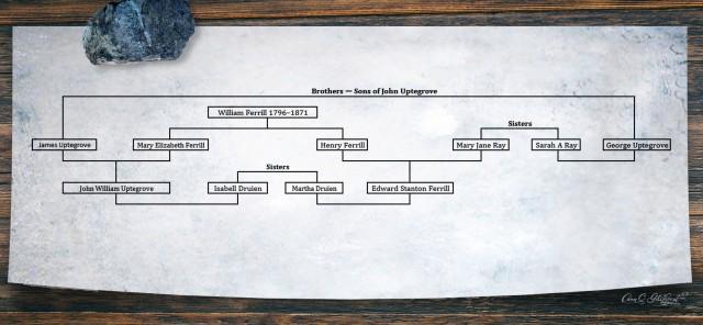 Ferrill Tree