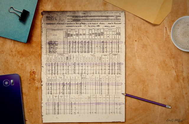 1880 Census Records